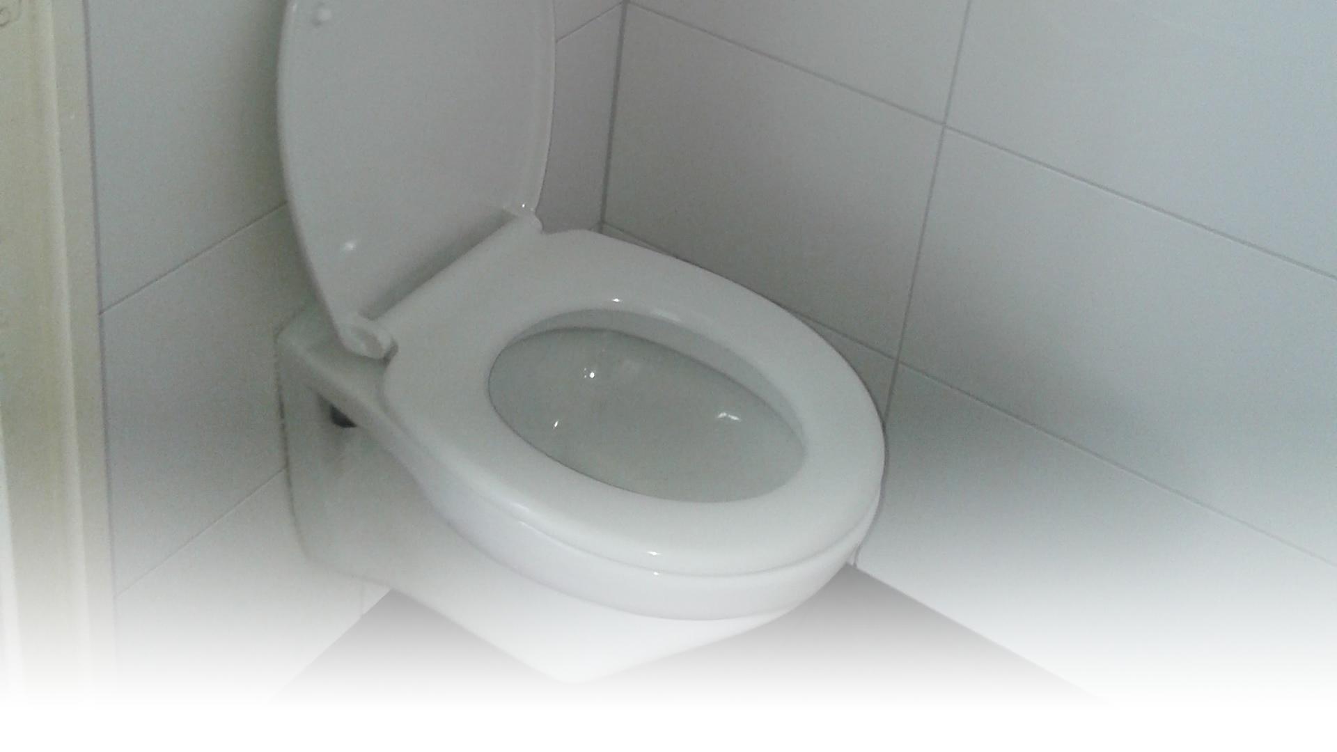Toilet Renovatie Kosten : Toilet renovatie kampshof bouw